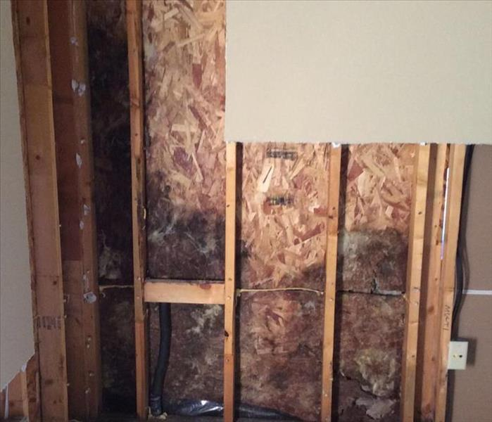 Mold Remediation in Keller, TX Before