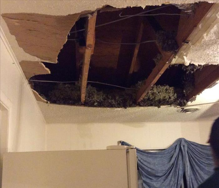 Water Damage - Fort Worth, Texas