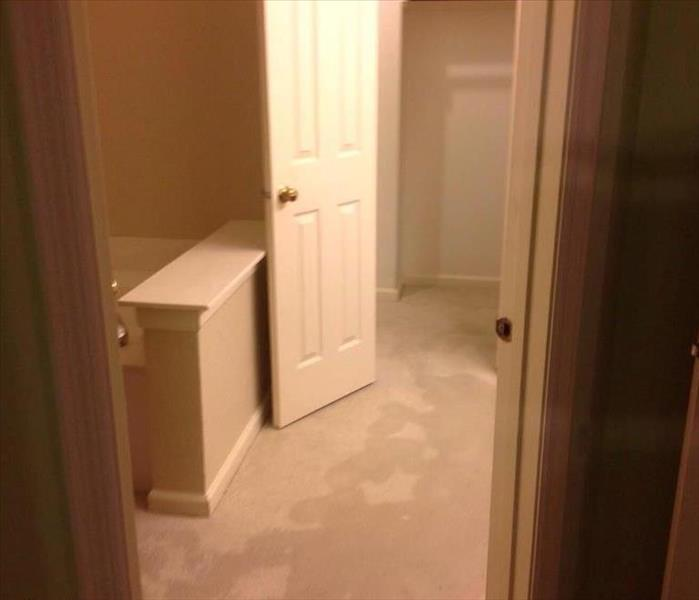 Water Damage- Grapevine, Texas