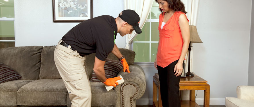 Grapevine, TX carpet upholstery cleaning