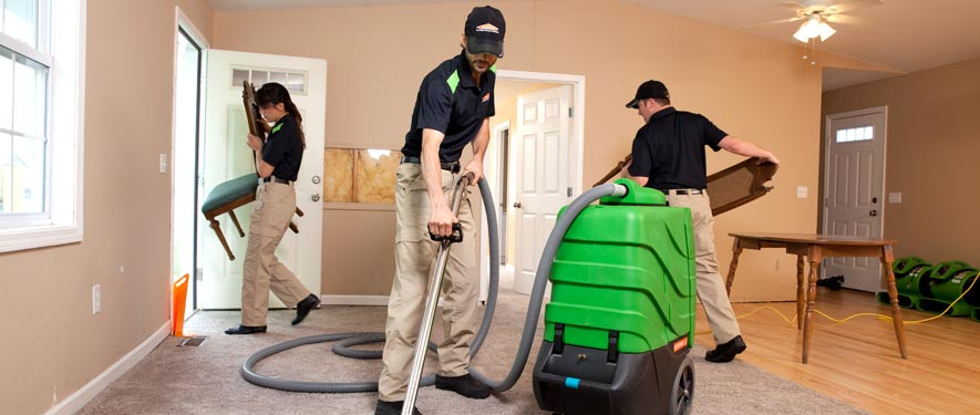 Grapevine, TX cleaning services